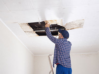 dropped ceiling mold repair